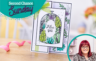 Second Chance Sunday - 16th May