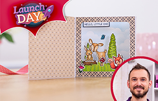 Launch Day - 18th June - NEW Cute Character Box Card Stamps & Dies