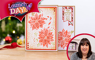 Launch Day - 22nd July - NEW Christmas 3D Folders and Stencils & Cosmic Shimmer