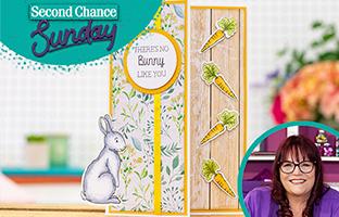 Second Chance Sunday - Sunday 22nd November