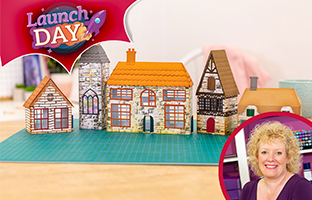 Launch Day - 25th Feb - NEW Country Village Dies