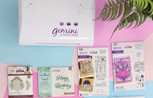 Gemini Machine Offer of the Month