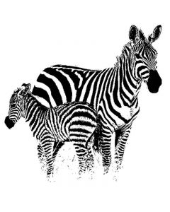 Imagination Crafts Art Stamps - Zebra