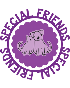 Gemini Circle Sentiments Stamps and Die - Special Friends