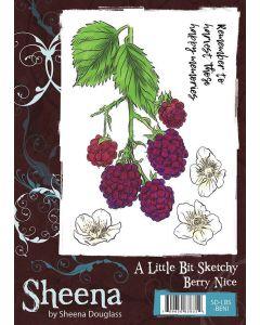 Sheena Douglass A Little Bit Sketchy A6 Rubber Stamp Set - Berry Nice