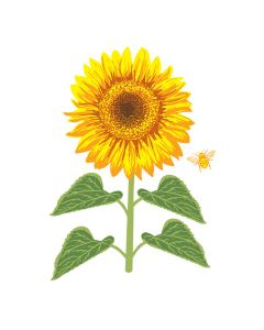 Crafter's Companion Photopolymer Stamp - Happy Sunflower