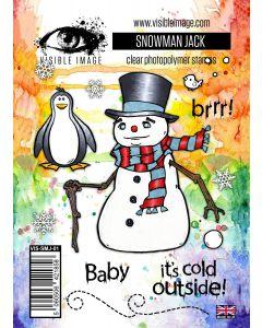 Visible Image Stamp Set - Snowman Jack