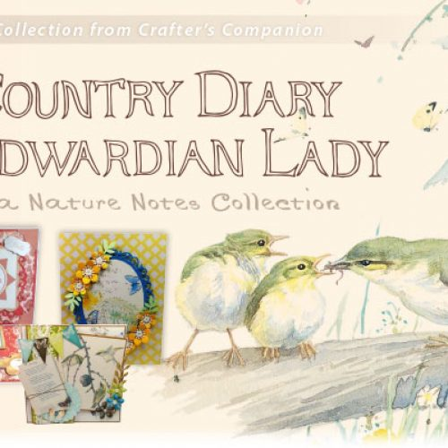 Country Diary of an Edwardian Lady stamp die embossing folder set bird phrases